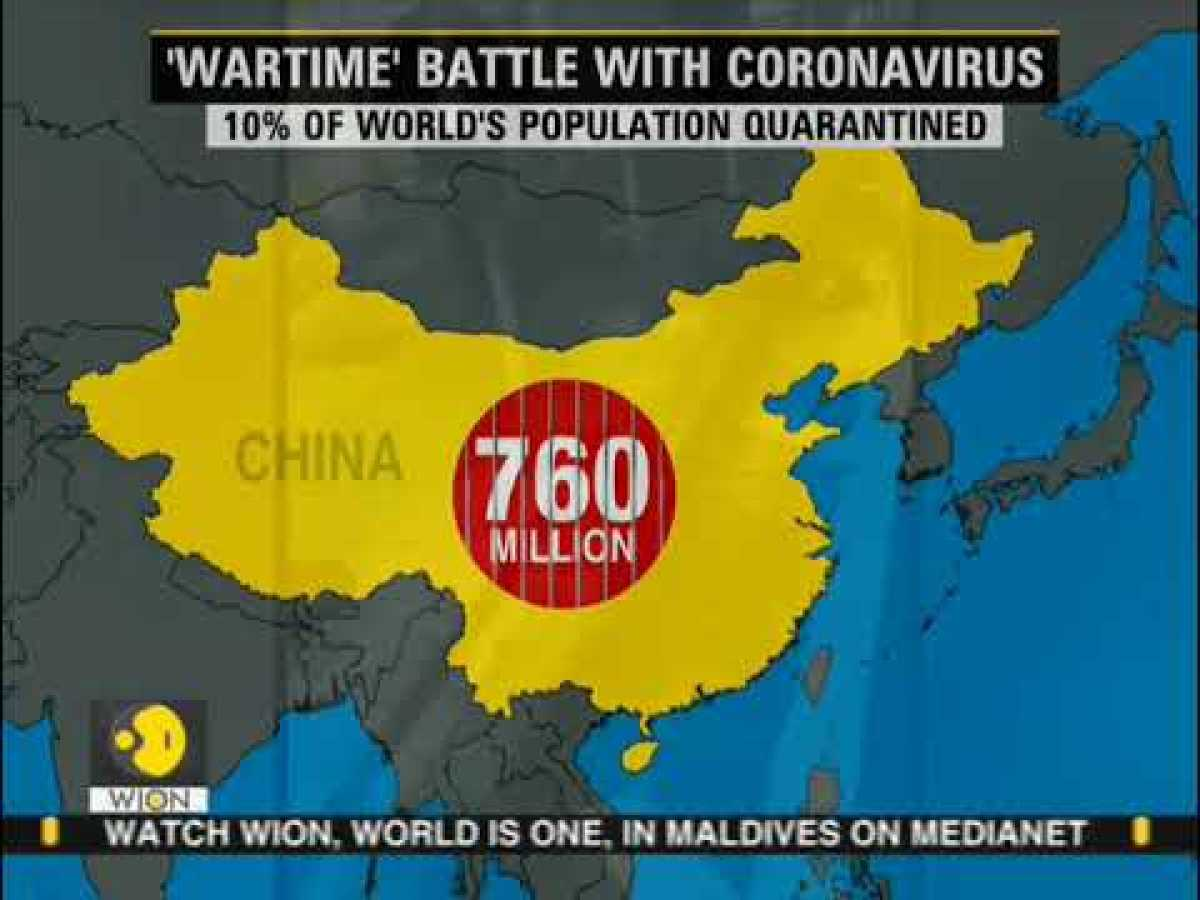 Coronavirus Outbreak: Can plasma be the cure for COVID-19? WION News | World News
