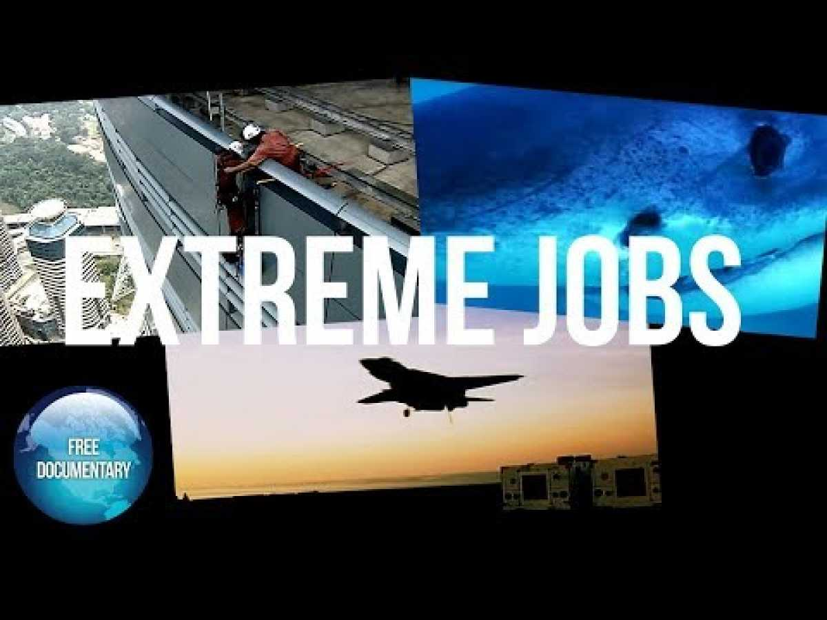 EXTREME JOBS: Eps 5 - Window Cleaner, Shark Scientist, Ordinance Expert