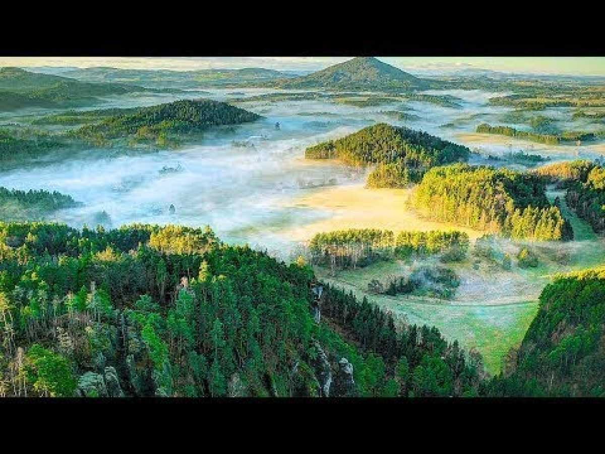 National Geographic Wild - Wildest Europe Forests & Woodlands - BBC Documentary History