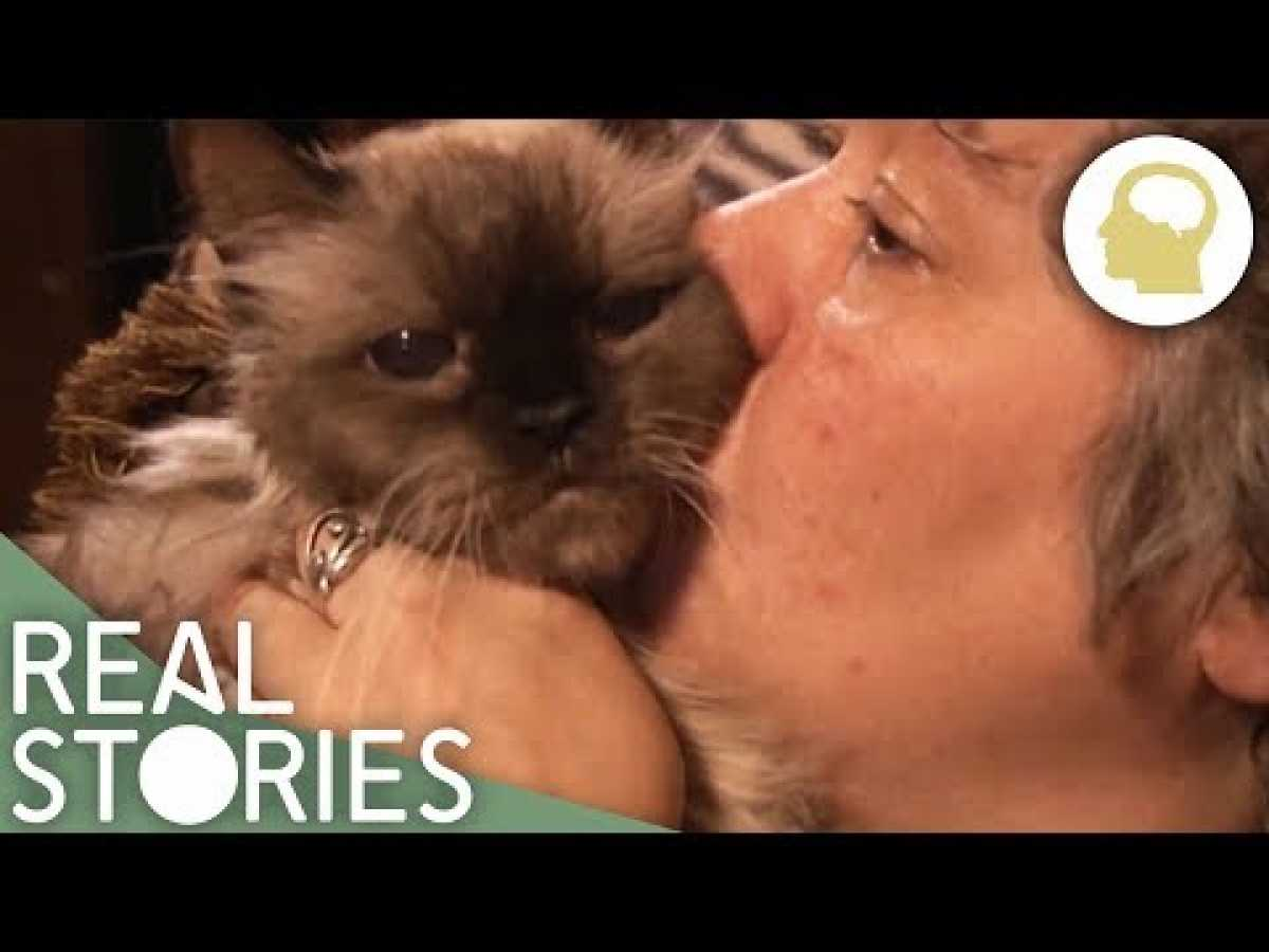 Cat Ladies (Obsessive Cat Owners Documentary) | Real Stories