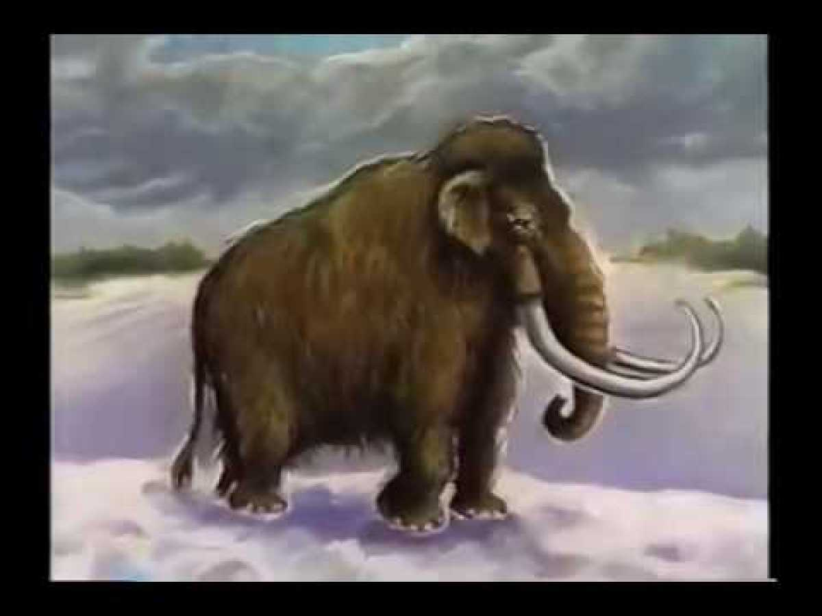 Amazing Life Mammoths of The Ice Age Discovery Documentary 2015 HD